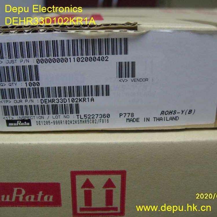 DEHR33D102KR1A